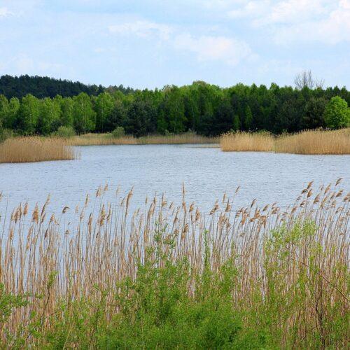 39-latek utoną w Zalewie Sulejowskim
